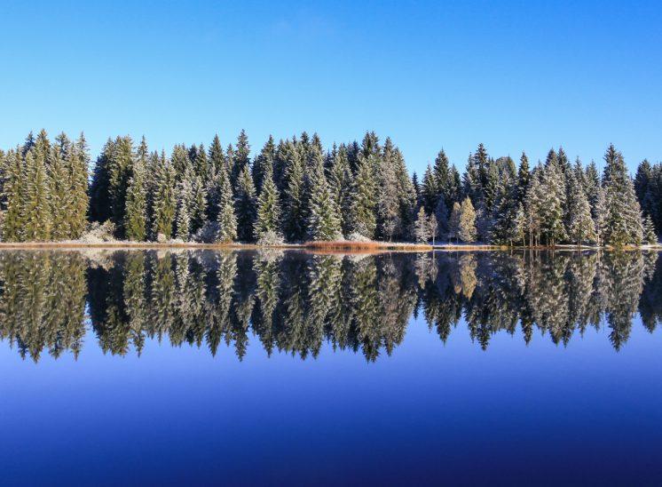 Photographie de paysage prise à l'Etang de la Gruère dans la Région des Franches-Montagnes dans le canton du Jura en Suisse