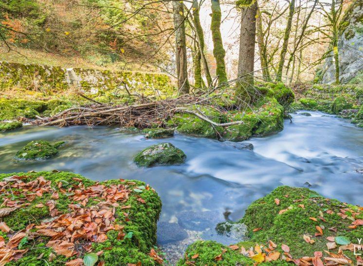 Photographie de paysage prise au bord de la rivière La Sorne dans la vallée de Delémont dans le canton du Jura en Suisse en 2019 landscapes photographer Switzerland photographe de paysages suisse